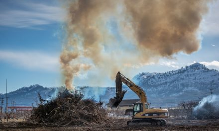 Osoyoos man hopes proposal can end agricultural waste burning