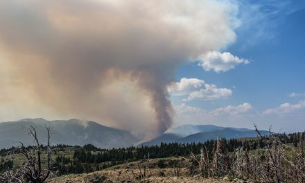 Recruitment now underway for 2019 wildfire fighters