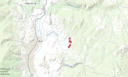 UPDATE: Fires burning east of Oliver under control