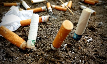 Council defers action on Smoke Free bylaw