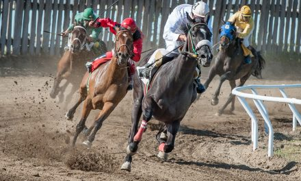 Huge crowds pack into Desert Park as racing returns after 15 years
