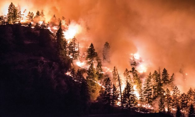 Wildfire danger rating raised to moderate or high
