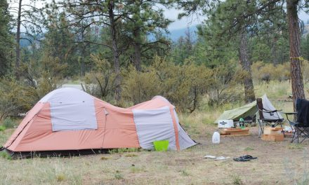 RDOS applies to allow Loose Bay Campground use on ALR land