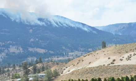 Mountain fire 80 per cent contained