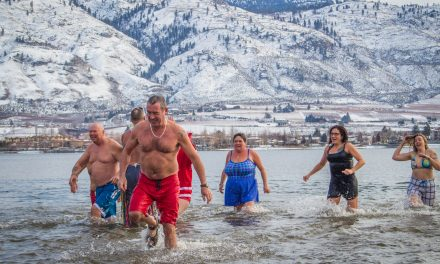Swimmers take icy New Year's Day dip
