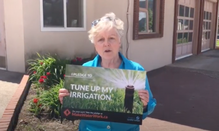 Mayor McKortoff lends support to virtual water conservation challenge