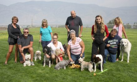 Dog lovers want park to stay right where it is