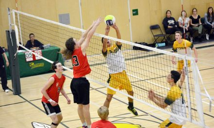 Hornets put the sting to Mustangs