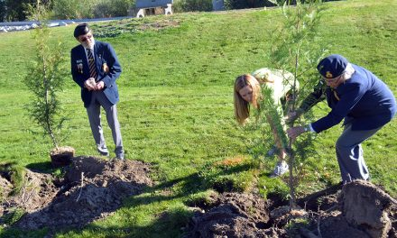 Eighty new trees planted in Lion's Park