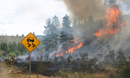 Crews snuff out Oliver Wildfire