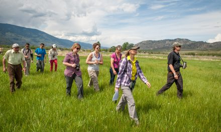 Popular nature hikes begin Sunday, March 1