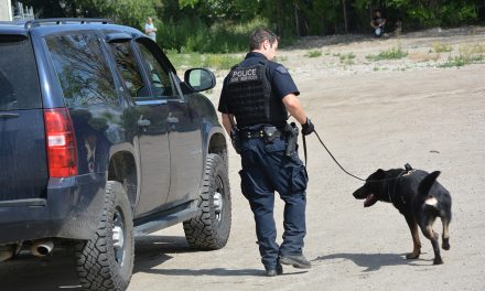 Dogs track repeat offenders after break-in
