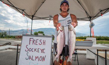 Nk'Mip sells sockeye salmon fresh from the boat