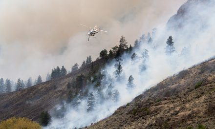 UPDATE: Richter Creek wildfire now 80 per cent contained