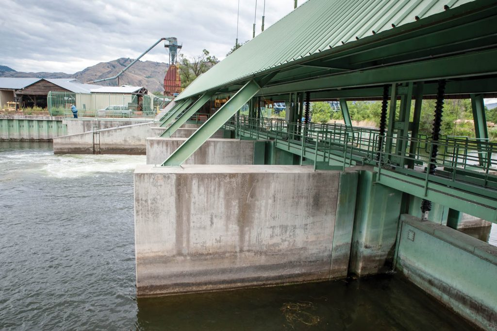 The Zosel Dam in Oroville, WA helps to maintain the level of Osoyoos Lake. It also forms a barrier for sockeye salmon migrating up the Okanogan River in Washington to Osoyoos Lake. (Richard McGuire photo)