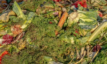RDOS seeks grant to fund curbside organic waste pick up