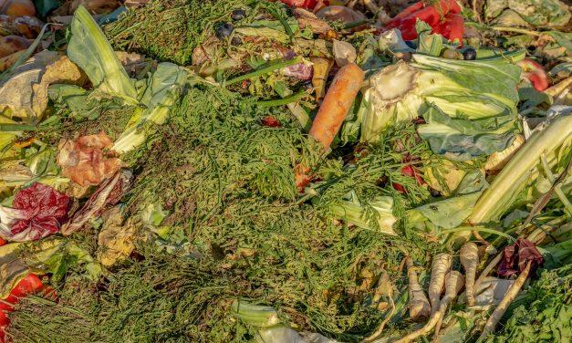RDOS seeks grant to fund curbside organic waste pick up